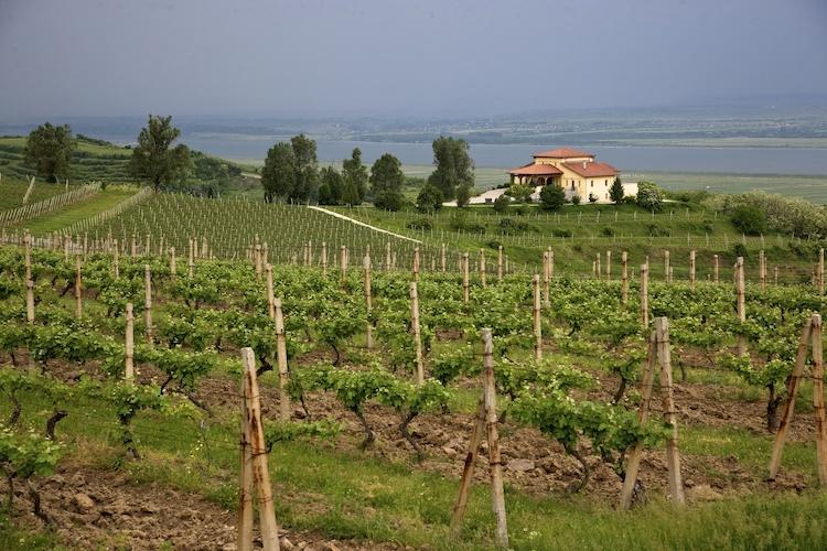 Stirbey winery