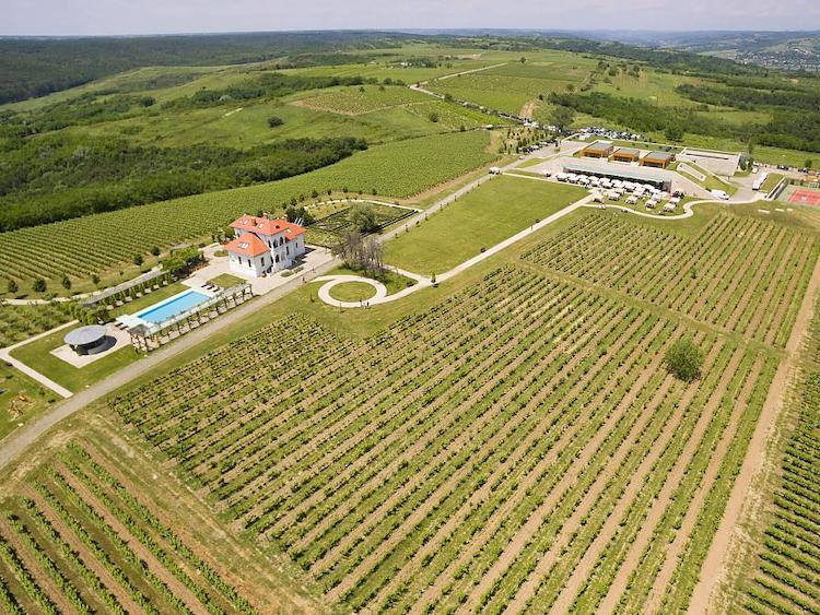 Avincis Winery