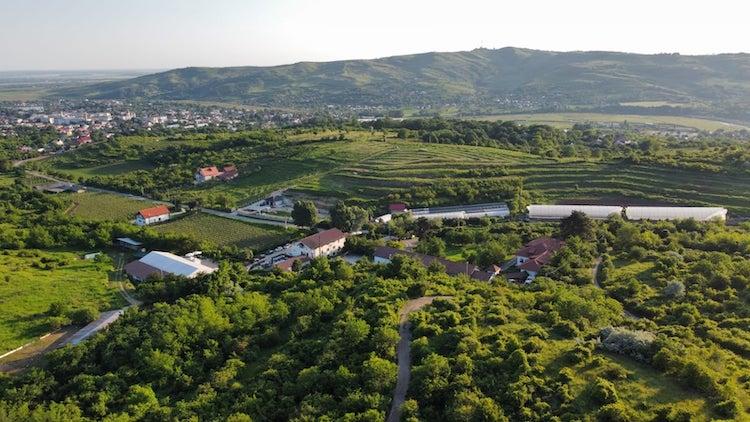 1000 de Chipuri winery
