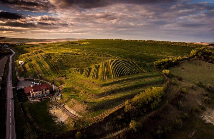 La Salina Winery